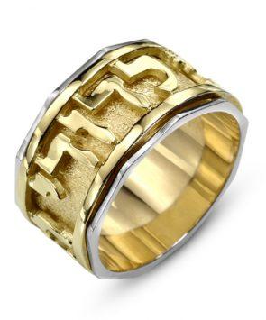 14k gold  Ani ledodi Spinning Ring